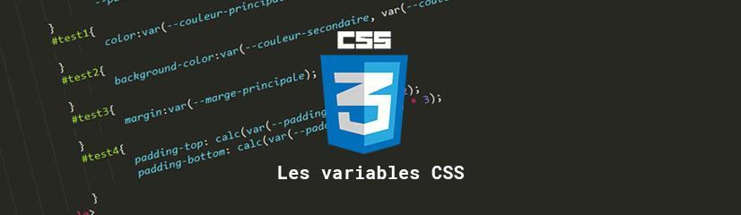 Pourquoi et comment utiliser des variables en CSS ?