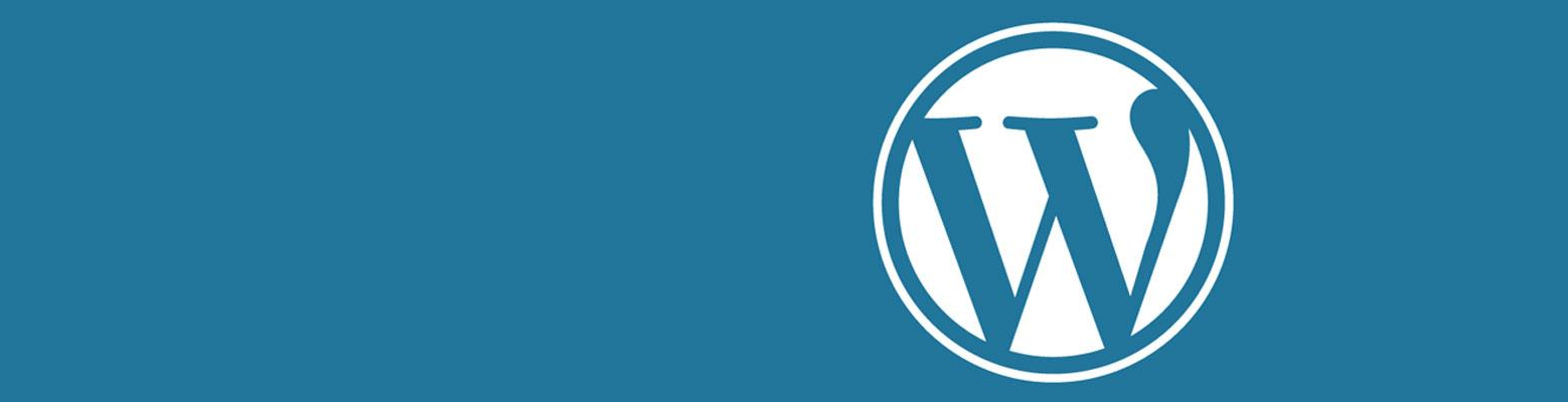 10 techniques pour améliorer la rapidité de son WordPress